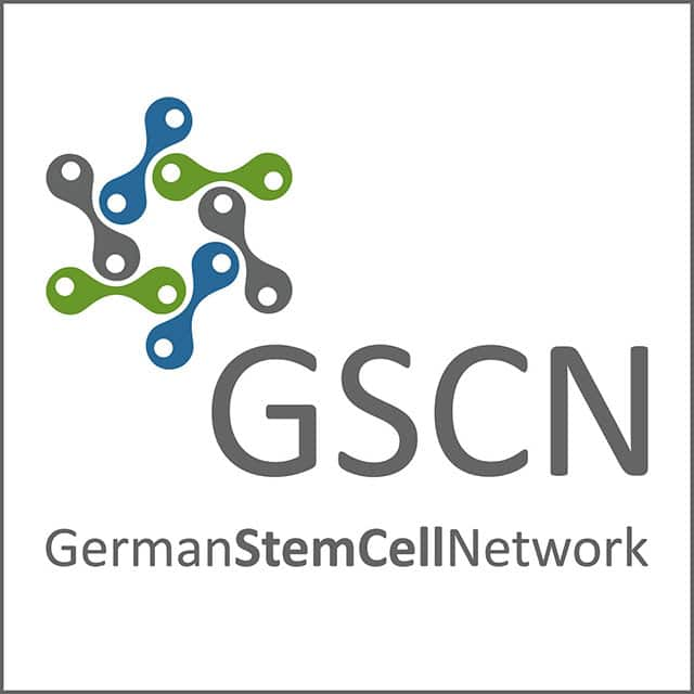 Interview mit Stefanie Mahler vom German Stem Cell Network 1