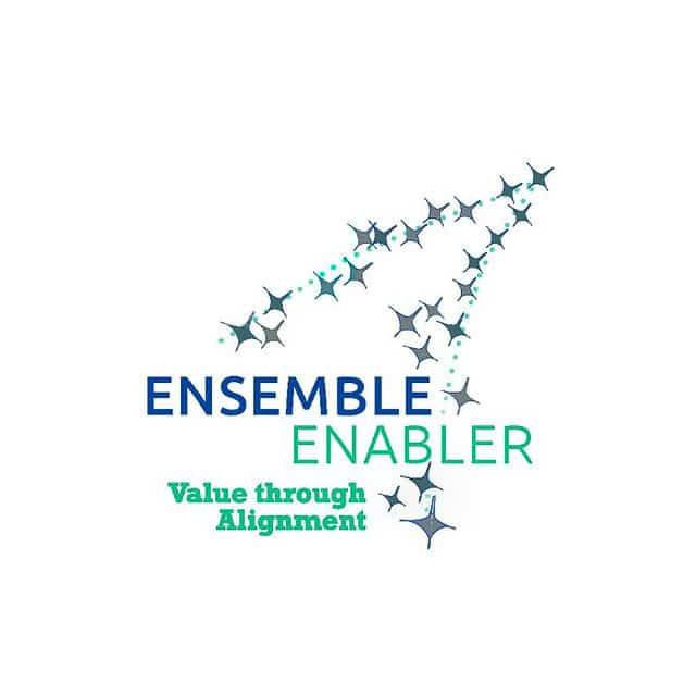 Interview with the Ensemble Enabler Team 1